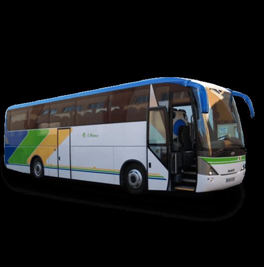 Modelo de autobus en alquiler